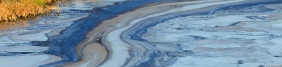 Râuri şi lacuri poluate