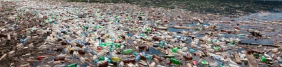Pata de gunoi a Pacificului